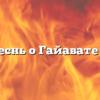 Песнь о Гайавате II