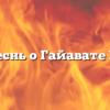 Песнь о Гайавате III